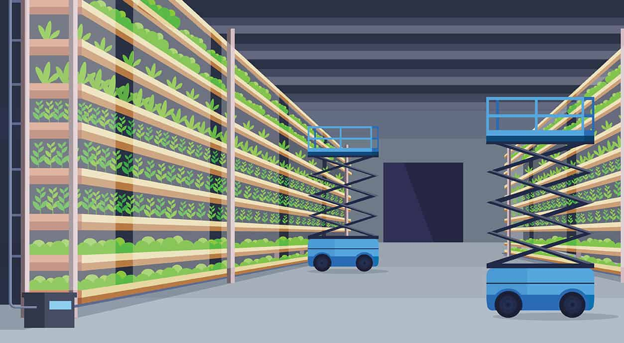 Multi-layer growing systems
